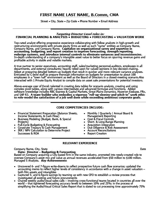 Director Of Finance Resume Template Premium Resume Samples & Example