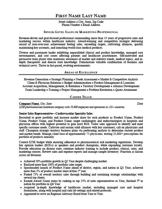 Territory Manager Resume Template  Premium Resume Samples  Example