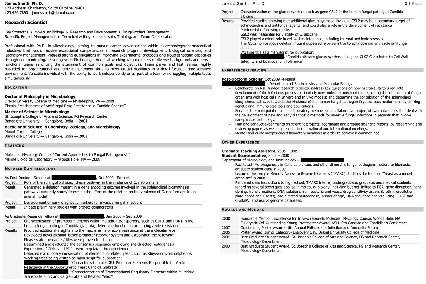 Adjunct Professor Resume Example - Examples of Resumes