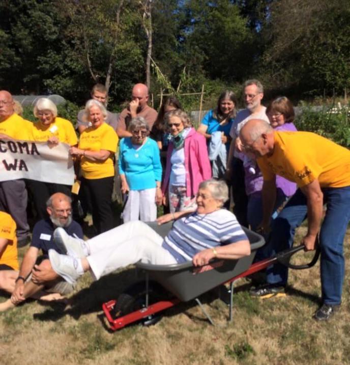 Fern-in-wheelbarrow
