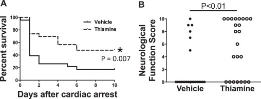 Thiamine as a neuroprotective agent after cardiac arrest
