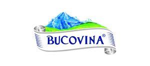 Logo Rio Bucovina