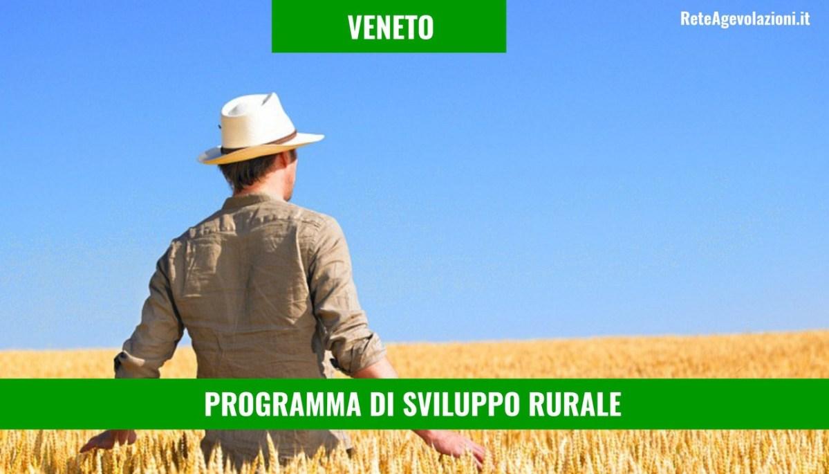 PSR VENETO - Agevolazioni Per l'Agricoltura 2018