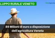 PSR Veneto agevolazioni agricoltura