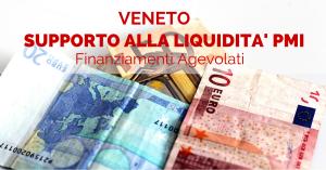 supporto alla liquidita pmi