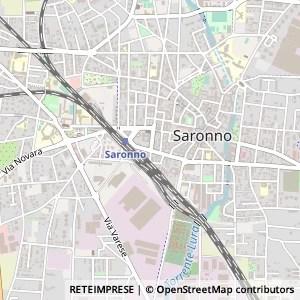 Il ginkgo di bonaiti giorgio  21047 Saronno