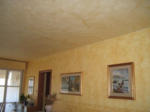 Velature Tamponati e Stucchi  Moncalieri