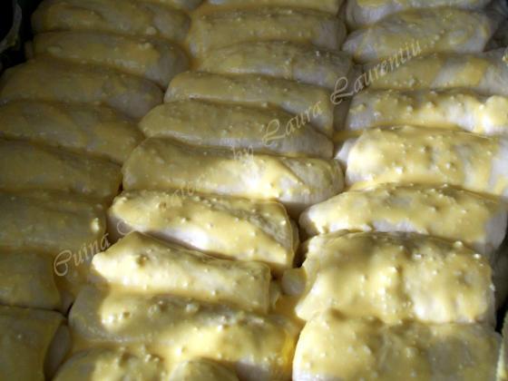 placinta banatana de la sat 11