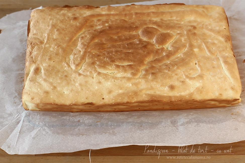 pandispan pufos, blat de tort, cu unt