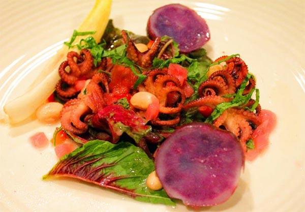 salata-de-primavara-cu-caracatita