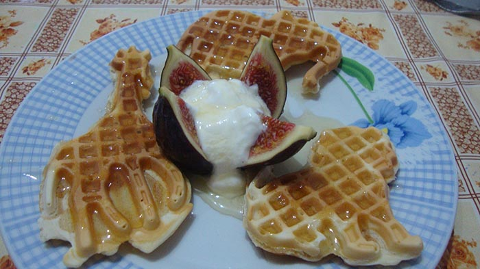 wafe-cu-miere-iaurt-si-smochine