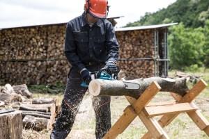 cordless chainsaw