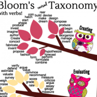 Download This Adorable Owls Revised Bloom's Taxonomy Poster!