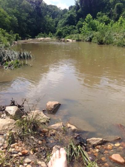 Neabsco Creek