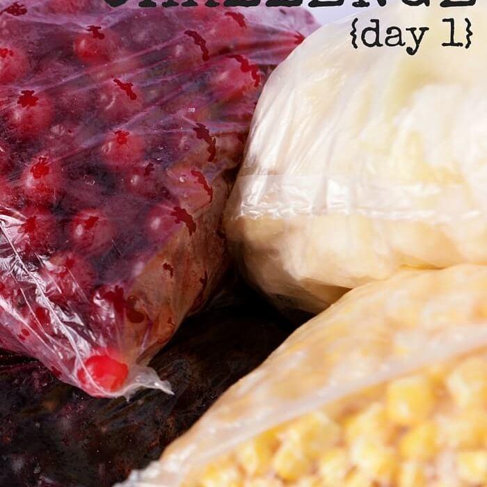 Empty The Freezer Challenge {Day 1}