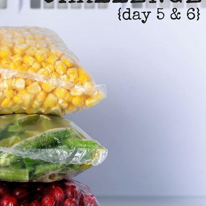 Empty The Freezer Challenge {Days 5 & 6}