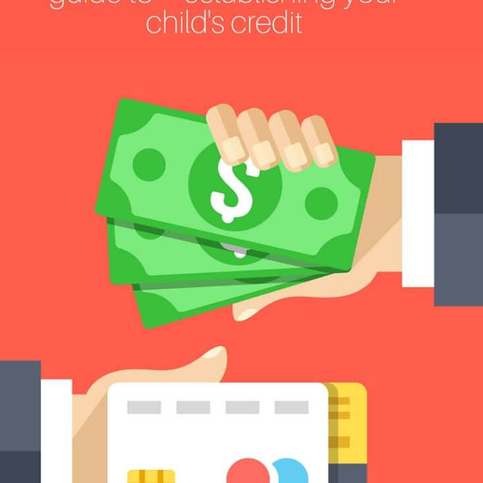 The Gift of Freedom: The Comprehensive Guide To Establishing Your Child's Credit
