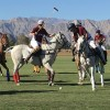 Polo Sunday!