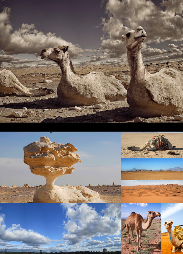 Retouching_Academy_Greg_Agee_Composite Artist_Interview_Desert-Camelflage