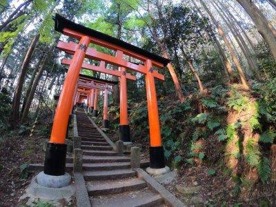Steps at Fushimi Inari