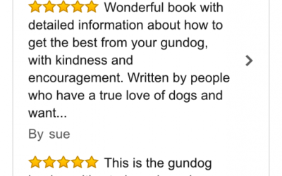 Reviews on Amazon