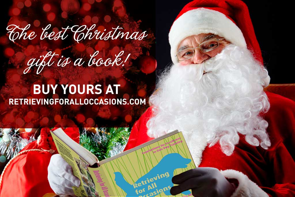 The best Christmas gift is a book!