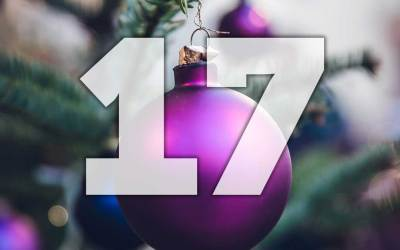 "Advent calendar day 17: Win the online course ""Five simple steps to master the perfect retrieve"""
