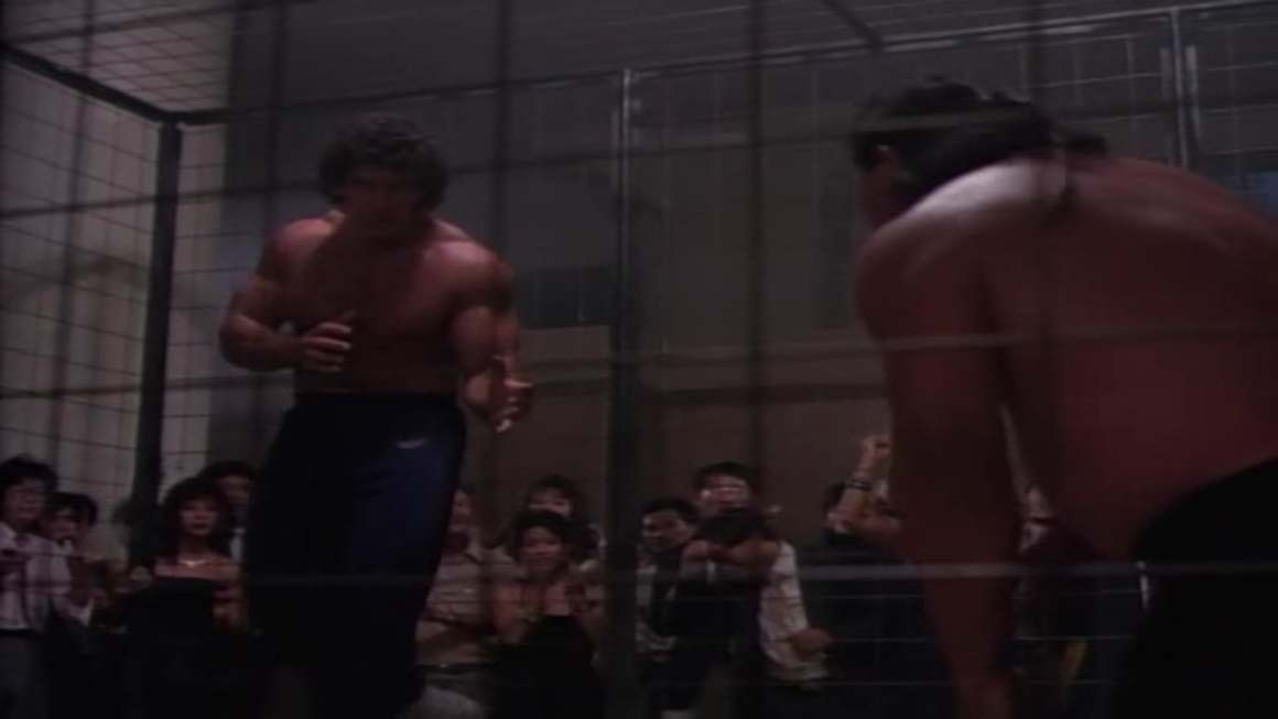 Kritik: Cage Fighter (1989)