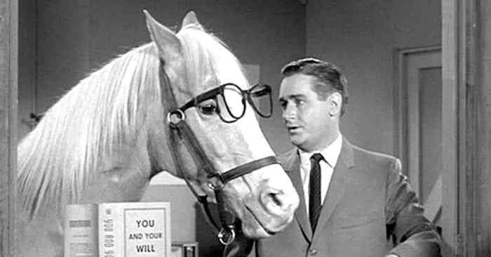 alan young mister ed horse glasses