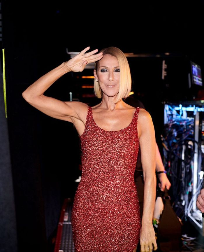 celine dion salutes while on tour