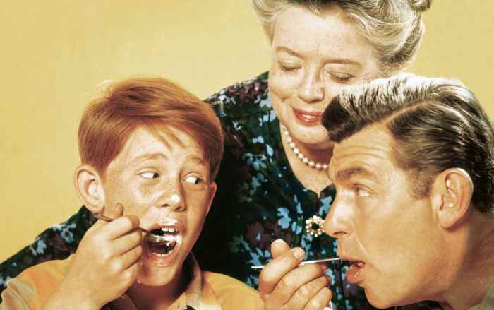 THE ANDY GRIFFITH SHOW, Ron Howard, Frances Bavier, Andy Griffith