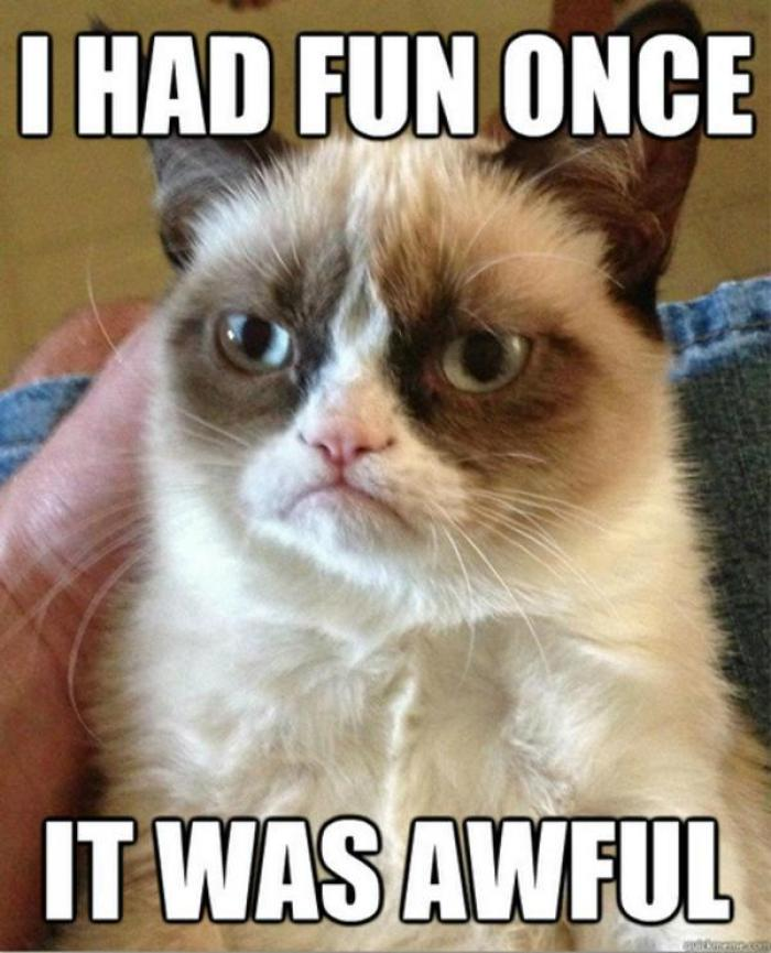 Grumpy Cat funny photo