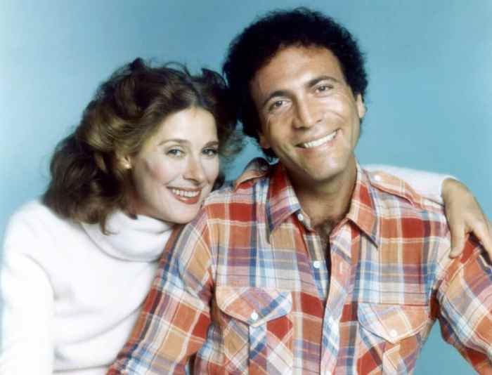 1970s-sitcoms-another-day