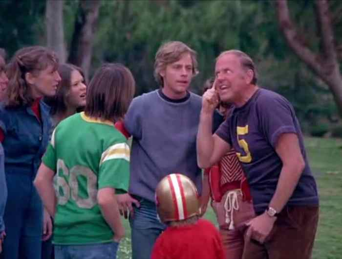 eight-is-enough-cast-including-mark-hamill
