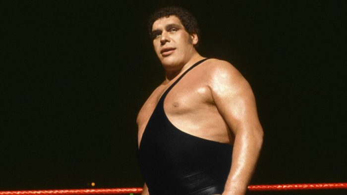 andre the giant 80s