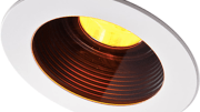 "Dasal Architectural Lighting's round Aqua Amber LED and square Nemo Amber LED trims and associated housings are ""turtle safe""."