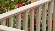 CertainTeed expands its EverNew Kingston vinyl railing system by inclduing a steep stair option.