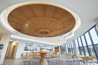 Veneer Ceiling Panels Improve Acoustics - retrofit