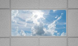 Virtual Skylights LED Panel Light Fixtures offer an alternative to window skylights.