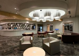 Lighting design also plays a role in defining zones and creating a comfortable ambience within the library.