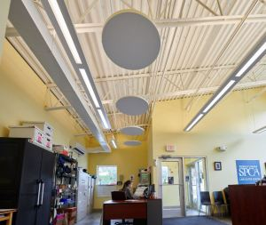 In the lobby area, four ECOPHON SOLO CIRCLE CLOUDS were installed to add a design pop in an otherwise utilitarian space.