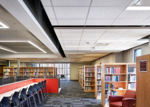 Rockfon Artic acoustic stone wool ceiling panels, baffles and islands offer a low-maintenance system.