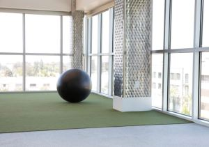 The Ecore Commercial Wellness Collection of surfaces is ideal for corporate, education, healthcare and fitness applications.