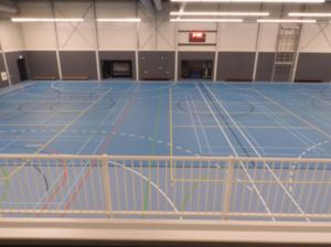 Action 33 Blue is ideal for basketball, volleyball, aerobics and training facilities.