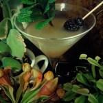 Tanis Inspired Cocktails 2  – Eld Fen Martini