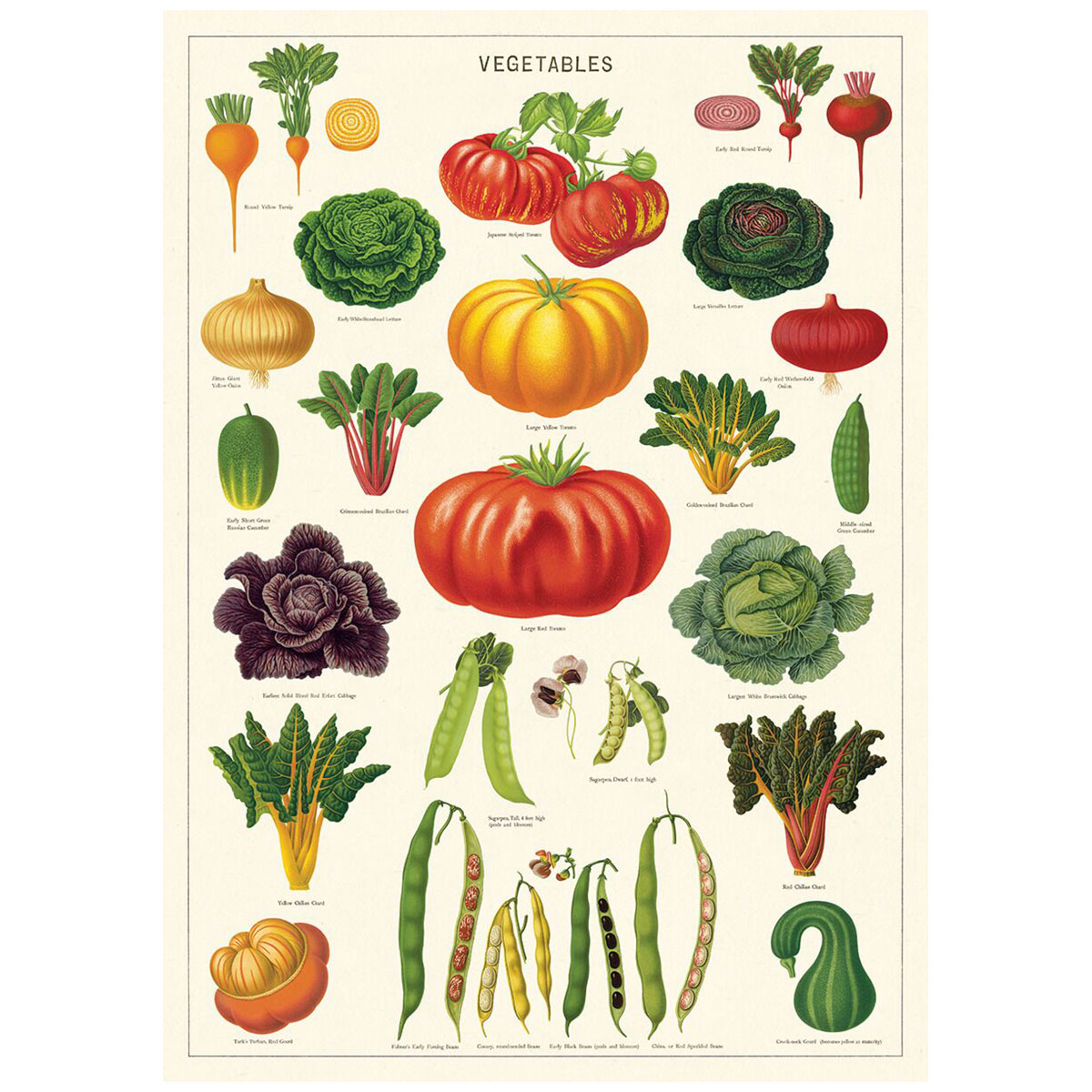 Vegetable Garden Chart Vintage Style Poster at Retro Planet