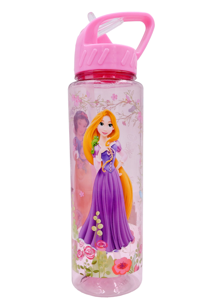 princess theme return gifts water bottle sipper