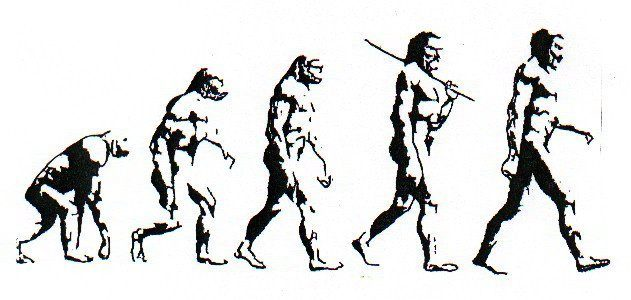 The Theory Of Evolution Does Not Apply To Modern Human