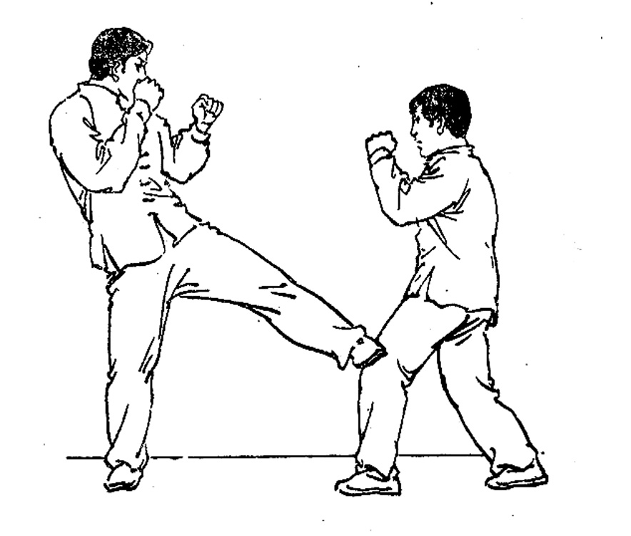 16 Tips that Might Save you Someday Self Defense-Kick the knees