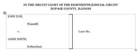 Case Caption